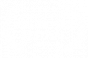 OFFICIAL SELECTION - BUSHO FILM FESTIVAL - 2020
