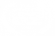 OFFICIAL SELECTION - Brussels Independent Film Festival - 2020