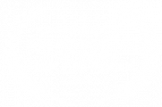 OFFICIAL SELECTION - Friss Hs Budapest International Short Film Festival - 2019