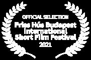 OFFICIAL SELECTION - Friss Hs Budapest International Short Film Festival - 2021